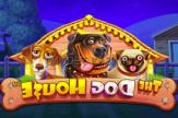 Автоматы онлайн pm casino